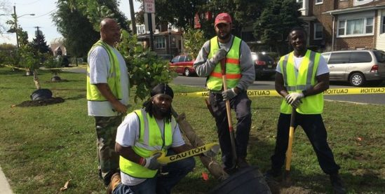 Hire us to landscape in your town or maintain your trees